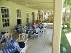 Tea at Good Hope Plantation, Jamaica