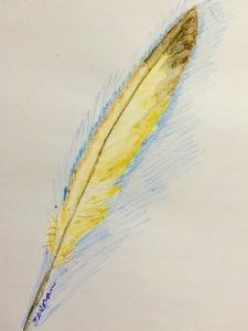 Feather JPG