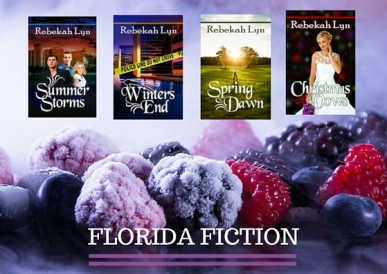 Seasons of Florida fiction winter collage