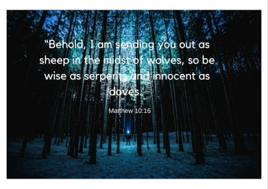 """Behold, I am sending you out as sheep in the midst of wolves, so be wise as serpents and innocent as doves."