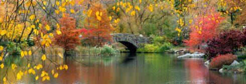 fall-lake-header