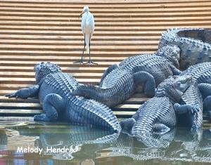 gators-and-bird-edited