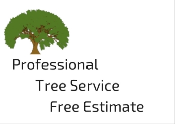 professional-tree-service-free-estimate
