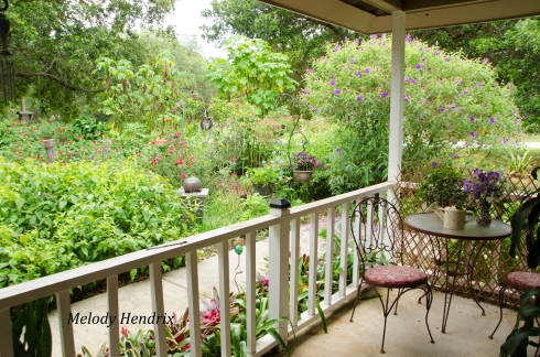 it takes some planning but the rewards are great you can even attract butterflies in a small container garden on a porch - Florida Butterfly Garden