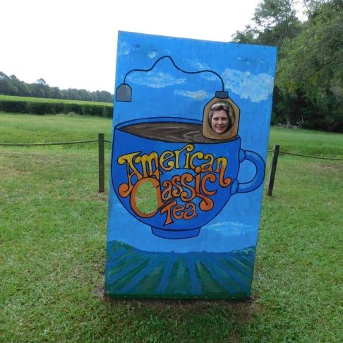 Rebekah in tea bag 10-9-18