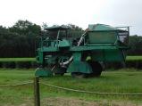 Tea Harvester 10-9-18