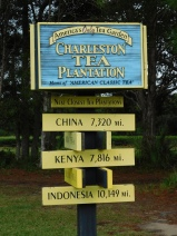 Tea Plantation sign 10-9-18