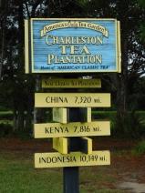 Tea Plantation sign 10-9-18