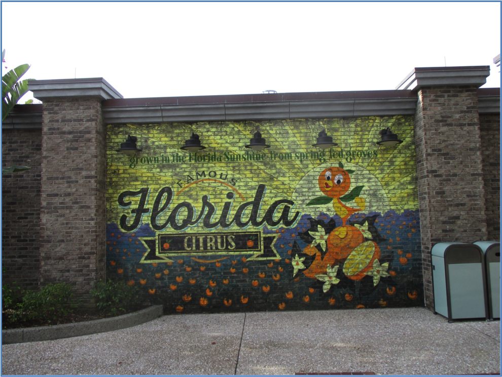 Description: Florida mosaic